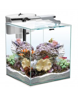 Aquael Duo Tanks - Nano Reef 35