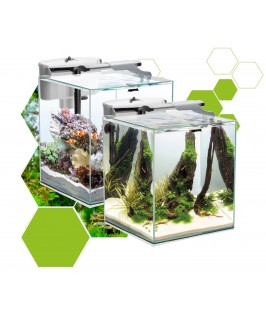 Aquael Duo Tanks