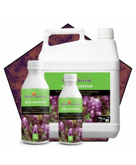 COMING SOON - Royal Nature Magnesium Solution
